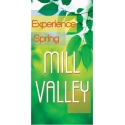 Experience Spring Boulevard Banner